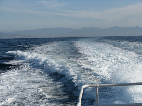 Hydrofoil Services from Naples Italy